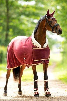 Dutch Crown burgundy
